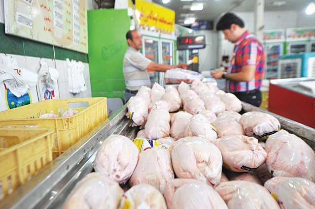 اجرای طرح نظارتی بر بازار مرغ مشهد آغاز شد
